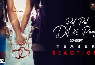 palpaldilkepaas-teaser-reaction-thelastreview